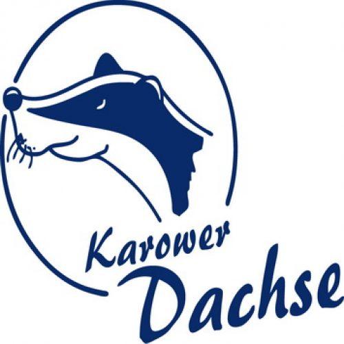 Dachse_logo_blau_2